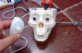Crâne interactif