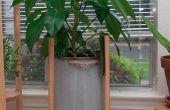 Cheville bois simple plante Stand
