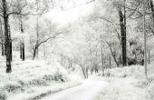 Transformer une Photo de l'été en hiver dans Photoshop