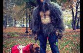 Costume de loup fait maison.