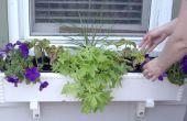 Jardinières pas chers et faciles