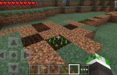 Comment obtenir des semences de betteraves dans minecraft PE.