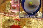 Hamster de Mongolie