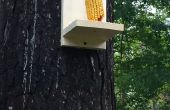 Facile de mangeoire Squirrel