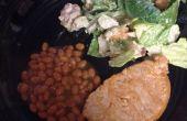 Côtelettes de porc BBQ de bon marché et facile rapide!!!