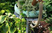 Kaléidoscope de jardin
