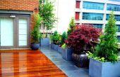 Conception de paysage de NYC - jardin sur le toit How-to