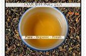 Comment infuser le thé Darjeeling