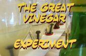 L'expérience de vinaigre grand