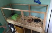 Construire une cage de cochon d'Inde avec un nettoyage facile ! (Projets avec les enfants)