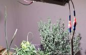 Jardin d'herbes aromatiques LED 8W bricolage