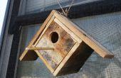 Voir à travers de la palette Birdhouse