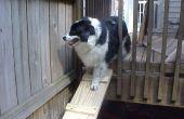 Rampe pour chien pour les ponts