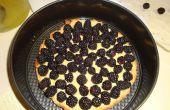 Manger les espèces envahissantes : Discolore tarte à la crème