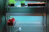Starter/Indoor plateau de plantation des graines