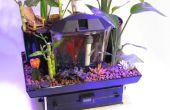 Le jardin de Betta - 5 gallons de culture aquaponique
