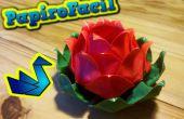 Origami facile : Comment faire une fleur de lotus