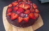 Gâteau aux fraises au chocolat et