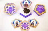 Boîte de chocogrenouilles HoneyDukes (Harry Potter anniversaire cotillons)