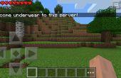 Comment faire un serveur temporaire du Pe Minecraft