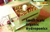 Culture hydroponique biologique, à petite échelle