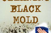 Nettoyage de salle de bain Mold(black Mold)