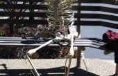 Projet de squelette