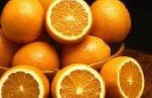 Faire les puces à fuir avec écorces d'orange