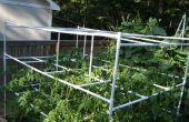 Cage de tomate avec le PVC