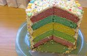 Hors de ce monde Rainbow Cake expérience