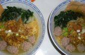 Poulet soupe de nouilles boulettes de viande (Mie Ayam Bakso)