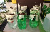 Système de culture hydroponique simple mèche