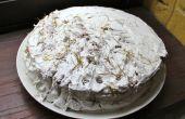 Gâteau de poils de chat