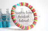 Bracelet de métier à tisser pour le rainbow hexafish