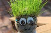 Têtes de coupe de cheveux Chia herbe pour animaux de compagnie !  Idéal pour les vacances d'été !