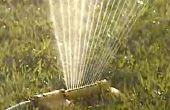 Hot Summer pelouse arrosage
