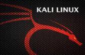 Piratage Internet magasins avec linux burpsuite et kali