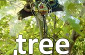 Charmes d'arbre