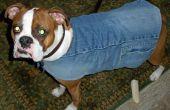 Faire une veste doublée chien de denim recyclé et une écharpe gratuite ! (ou presque)