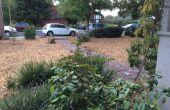 Eau sage Californie - zéro eau utiliser remplacement pelouse