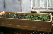 Construire une boîte de plantes d'une ancienne base de Futon