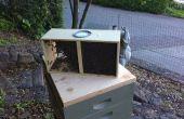 Différencier un paquet d'abeilles