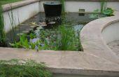 L'étang de Koi Ultimate