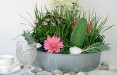 Arrangement Floral côtière avec succulentes