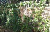 Tissent une clôture d'intimité de bambou