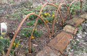 Bordure de vigne pour les parterres de fleurs