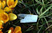 Comment faire des marqueurs durables plante