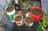 Faire votre propre maison jardin conteneurs de bouteilles en plastique