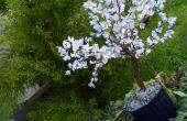 DIY Sakura - Cherry Blossom Tree avec du papier (avec vidéo)