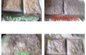 Fermentation Beans - Tempeh bricolage
